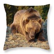 Ok -  It's Your Trail Throw Pillow