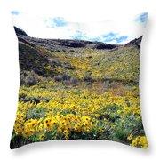 Okanagan Valley Sunflowers 1 Throw Pillow