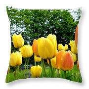 Okanagan Valley Tulips Throw Pillow