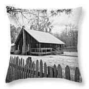 Okefenokee Home Throw Pillow