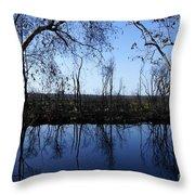 Okefenokee Reflection Throw Pillow