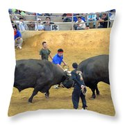 Okinawan Culture Bull Versus Bull Okinawan Bullfighting Throw Pillow