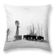 Oklahoma Dust Bowl, 1936 Throw Pillow