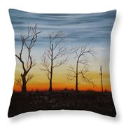 Country Road Sunset Throw Pillow
