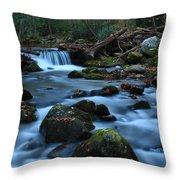 Okonoluftee Mountain Stream Throw Pillow