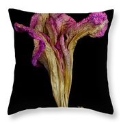 Old Age With Beauty Throw Pillow