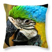 Old And Beautiful Throw Pillow