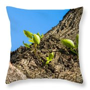 Old And New - Featured 2 Throw Pillow