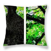 Old Barks Diptych - Deciduous Trees Throw Pillow