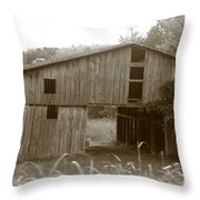 Old Barn 3 Throw Pillow