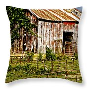 Old Barn #3 Throw Pillow