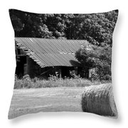 Barn In Kentucky No 84 Throw Pillow