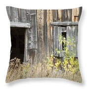 Old Barn In Fall Maine Throw Pillow