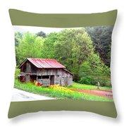 Old Barn Near Willamson Creek Throw Pillow
