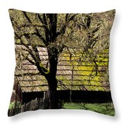 Old Barn Throw Pillow by Ron Sanford