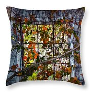 Old Barn Window Vines Throw Pillow