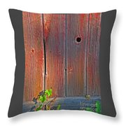 Old Barn Wood Throw Pillow