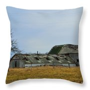 Old Barns In The Heartland Throw Pillow by Alys Caviness-Gober