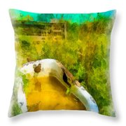 Old Bathtub Near Painted Barn Throw Pillow by Amy Cicconi
