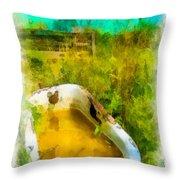 Old Bathtub Near Painted Barn Throw Pillow by Amy Cicconi