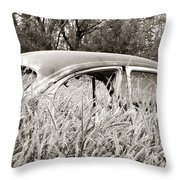 Old Beetle Throw Pillow