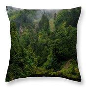Old Bridge - Austrian Alps - Austria Throw Pillow