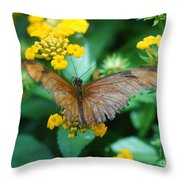 Old Butterfly Throw Pillow