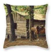 Log Cabin - Back View - At Big Creek Throw Pillow