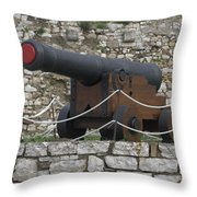 Old Cannon Throw Pillow
