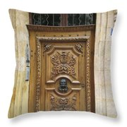 Old Carved Door Throw Pillow
