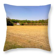 Old Chicken House On A Farm Field Throw Pillow