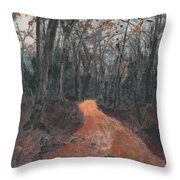 Old Connecticut Path Throw Pillow