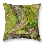 Old Decaying Lichens Moss Covered Taiga Tree Trunk Throw Pillow