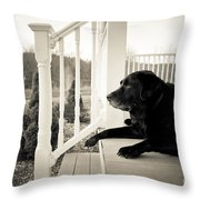 Old Dog On A Front Porch Throw Pillow