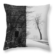 Old Door And Tree Throw Pillow by William Jobes
