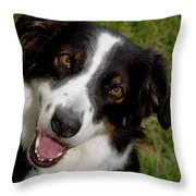 Old Faithful Throw Pillow by Diane Macdonald