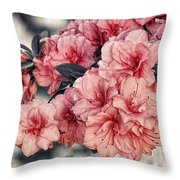 Old Fashion Azalea Throw Pillow