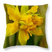 Old Fashioned Daffodil Throw Pillow