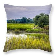 Old Fence Line At The Whale Branch Throw Pillow