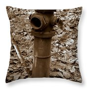 Old Fire Hydrant  Throw Pillow