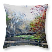 Old Florida Along The Sante Fe River Throw Pillow