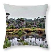 Old Florida Waterway Throw Pillow