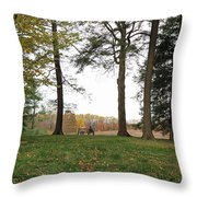 Old Friends On A Bench II Throw Pillow