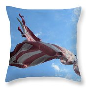 Old Glory - American Flag At The Site Of The Battle Of Bound Brook Throw Pillow