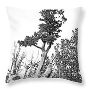 Old Gnarly Tree Throw Pillow