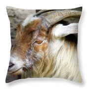 Old Goat Throw Pillow