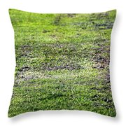 Old Green Grass Throw Pillow