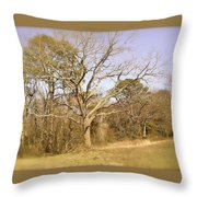 Old Haunted Tree Throw Pillow