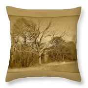 Old Haunted Tree In Sepia Throw Pillow