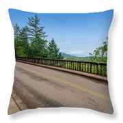 Old Highway And Forest Throw Pillow